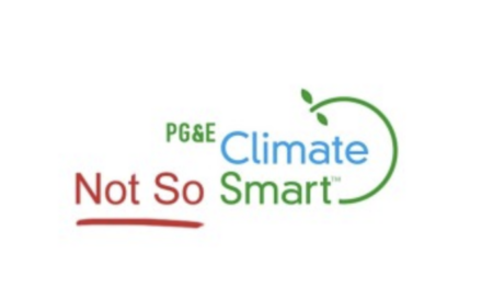 Klima-Bankrott:Grünes Unternehmen in Kalifornien macht pleite – weitere Pleiten werden folgen