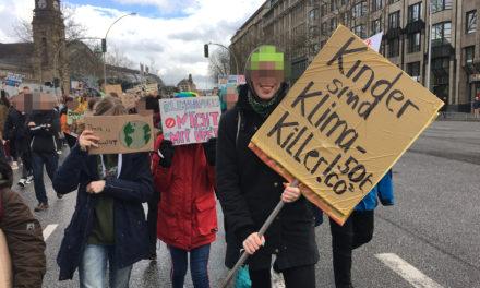 Fridays For Future in Hamburg: Kritische Fragen an Klima-Demonstranten