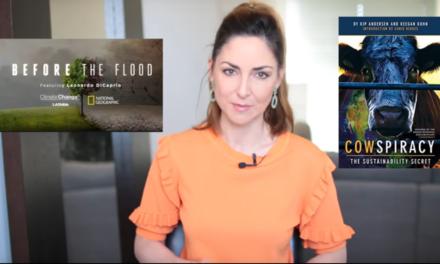 Wieso schaden Klimaschützer der Umwelt? … fragt Tamara Wernli