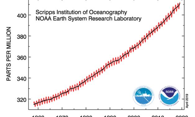 Ergebnisse der CO2 – Messung am Mauna Loa (Hawai)