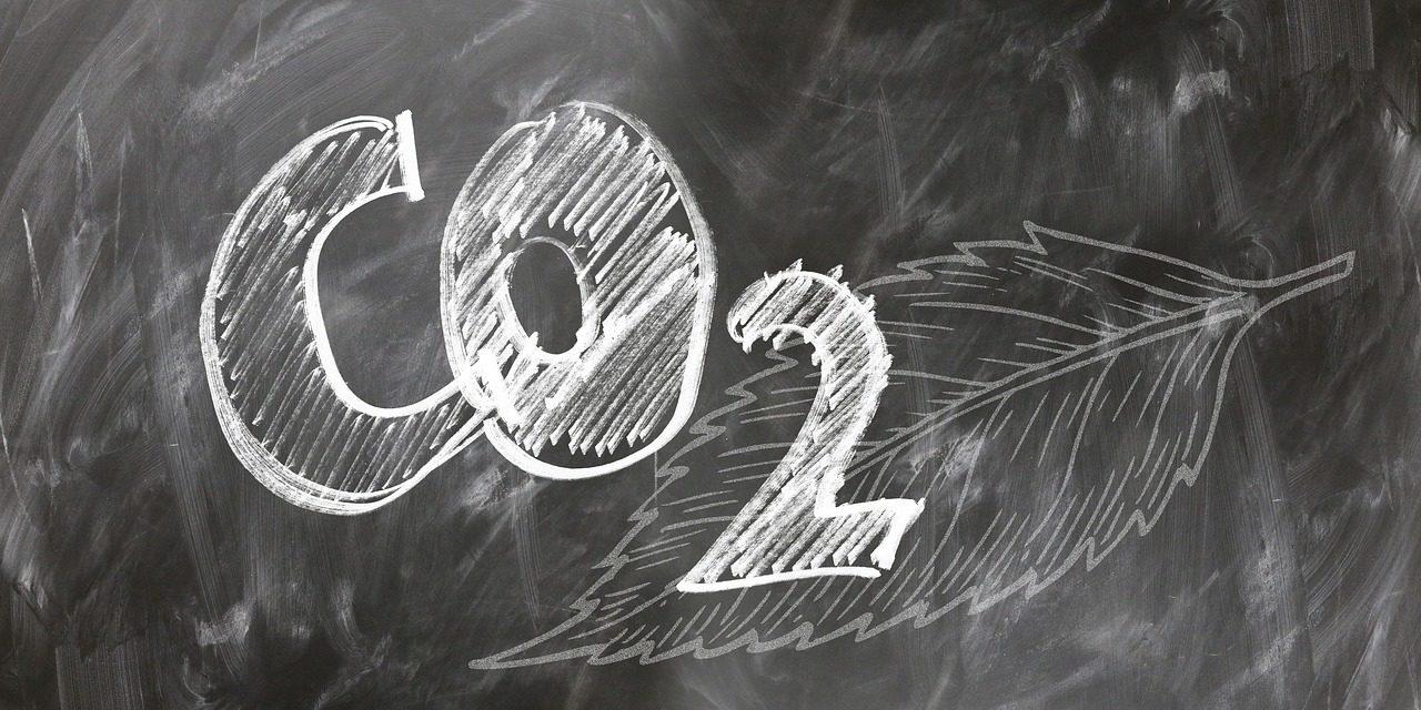 Was Sie schon immer über CO2 wissen wollten: Teil 5, ohne CO2 kein Leben auf der Erde