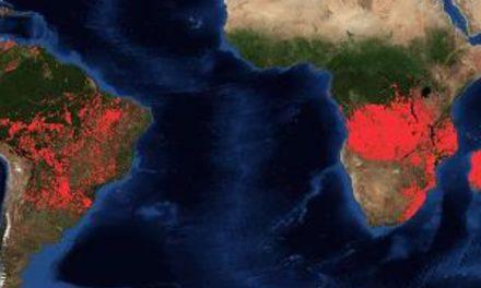 Zentraler Desinformations-Funk – Lügen gehen weiter: ZDF zu Klimawandel und Bränden im Amazonas