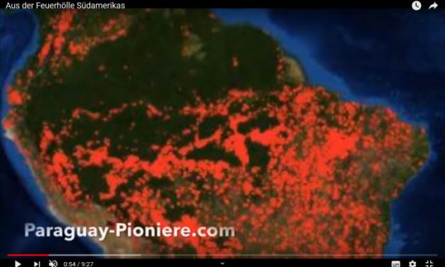 Regenwald-Schwindel: Klöckner will Einfuhrzölle für Brasilien erhöhen, Sozialist Morales von Kritik verschont