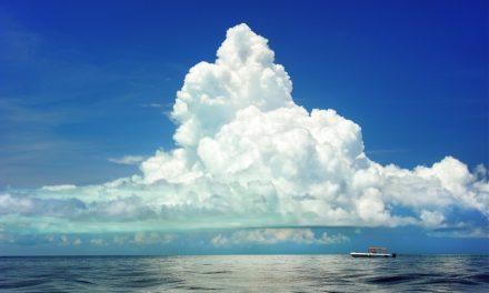 Wolkenrückkopplung – falls es sie überhaupt gibt – ist negativ