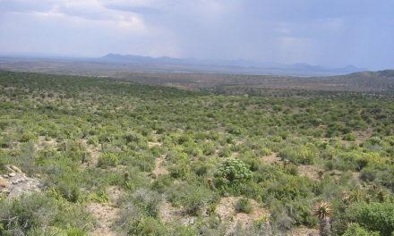 Treibhausgase in der afrikanischen Wüstenluft – tagsüber heiß, nachts eiskalt