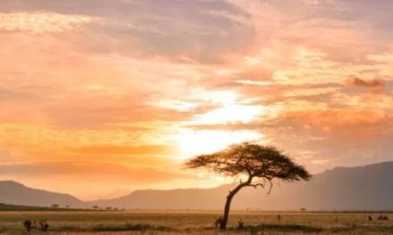 Ein sicheres Endlager in Afrika