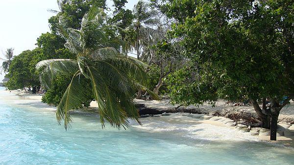 Die pazifischen Inselstaaten wollen nicht länger die Deppen für die Klimaalarmisten spielen