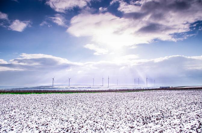 Michael Moore und Paul Driessen einig: Wind-, Solar- und Biotreibstoff-Energie zerstören den Planeten Erde!