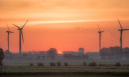 Mexikanische Pattsituation: Investoren von Wind und Solar sind wütend, da die mexikanische Regierung alle neuen Anlagen blockiert