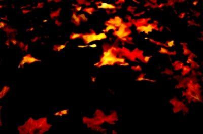 ,Klima-Brandstiftung' und anderer Unsinn bzgl. Flächenbränden