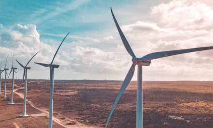 Zeitungsumfragen zur Energie und zu E-Autos – interessante Ergebnisse!