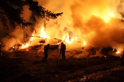 Unbestreitbare NASA-Daten: Globale Brände haben um 25% abgenommen