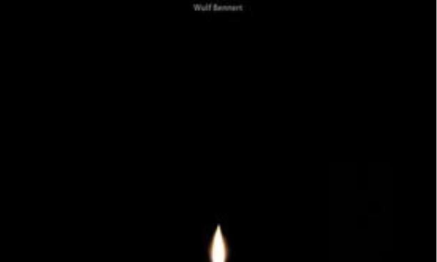 """""""Blackout – kleines Handbuch für den Umgang mit einer wachsenden Gefahr"""" – eine Rezension"""