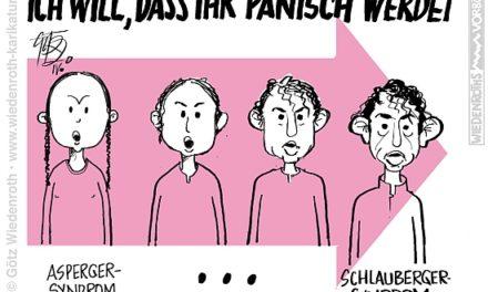 Karlsruher Klimaurteil: Ohne Schlüssel Im Panikroom!