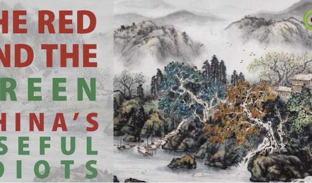 Die grünen NGO-Klimapropaganda-Stoßtruppen von China