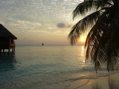 Alarmismus geht auf den Malediven unter: