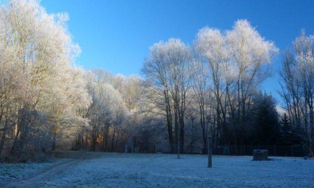 Winter – der Erwärmungsverweigerer?