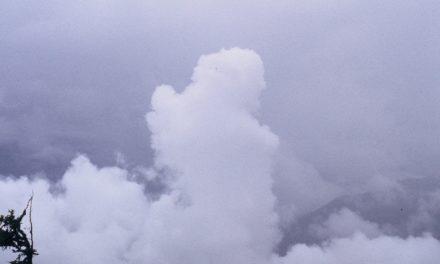 Die Behauptungen der NOAA bzgl. Klima-Katastrophen sind eine Schande