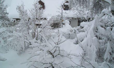 Kein Schnee mehr? Finnland glaubt, dass der Winterschnee in diesem Sommer nicht vollständig abtaut