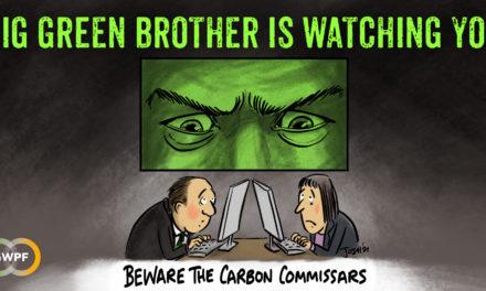 Die Kohlenstoff-Kommissare überwachen euch! Unternehmen müssen sich zwangsweise grünen Auditoren stellen