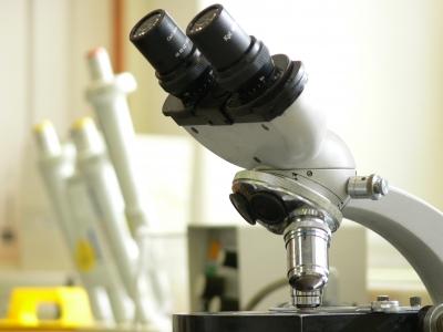 """Ist die Pandemie nur eine """"Laborpandemie"""" ?"""