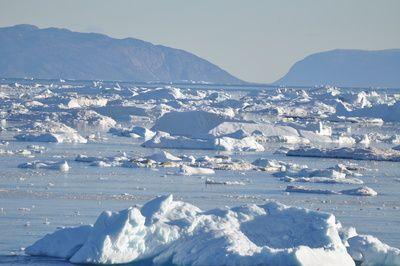 Grönland war in der Vergangenheit viel grüner – ohne menschliches Zutun