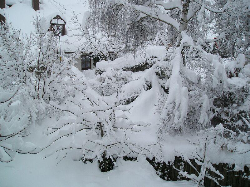 Kältereport Nr. 8
