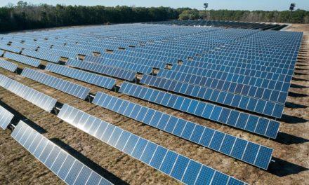 """Warum """"Grüne Energie"""" keine """"saubere Energie"""" ist – und schon gar nicht fossile Treibstoffe ersetzen kann"""