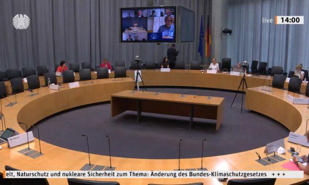 Parlaments-Anhörungen als ein Stück Gaukelwerk