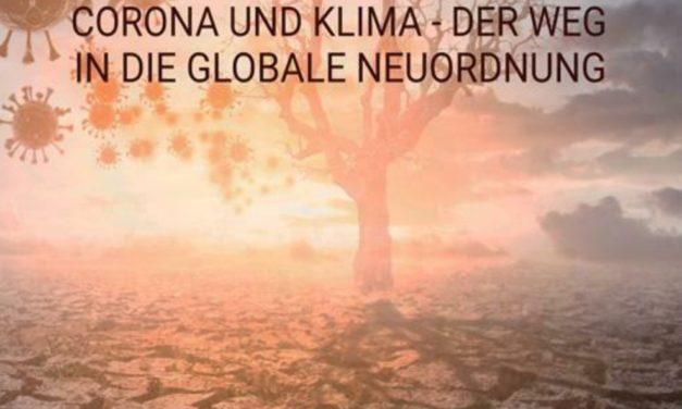 Die grosse Transformation- Corona und Klima. Der Weg in die globale Neuordnung.