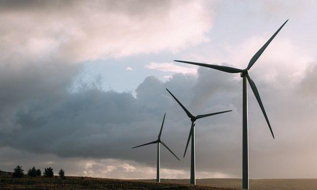 Windenergie in der Krise – Teil 2: Jetzt geht es dem Wald an den KragenVon