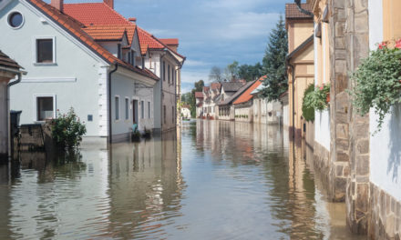 Warnungen vor Extremwetter ↔ Klimawandel ↔ Grüne Scheinheiligkeit