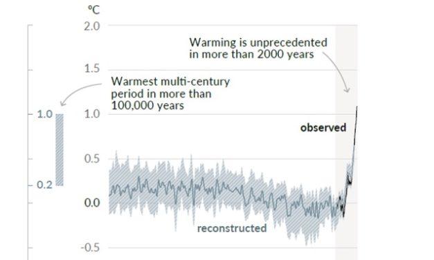 Wer hat die mittelalterliche Wärmeperiode ausradiert ?*
