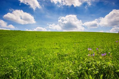 Die Grüne Agenda trifft auf die Energie-Krise (gerade pünktlich für COP 26)